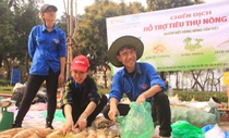 Giá 'giải cứu' khoai tây: 12.000 đồng/kg, su hào: 3.000, củ cải: 4.500