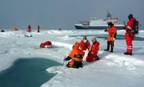 Báo động vụn nhựa trong băng Bắc Cực