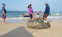Sau sự cố Formosa, môi trường biển đã phục hồi chưa?