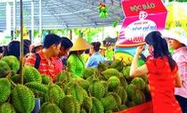 Gần 1.000 tấn trái cây chào Lễ hội trái cây Nam Bộ 2018