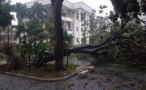 Tâm bão số 12 đổ bộ đất liền, gió cấp 11 tại Nha Trang, Tuy Hòa mất điện