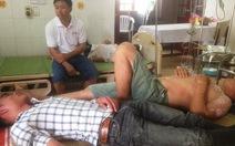 Ong rừng tấn công, 10 người nhập viện
