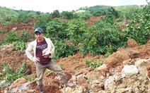 Sụt lở đất nghiêm trọng, chôn vùi 10ha cà phê ở Lâm Đồng