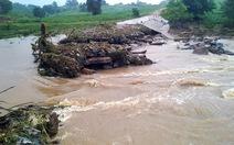 Sau mưa lớn, nhiều buôn ở Đắk Lắk bị cô lập