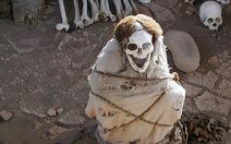 Halloween đi đến những điểm 'rùng rợn' nào?