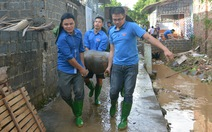 Hàng nghìn thanh niên tình nguyện giúp dân sau mưa lũ miền Bắc