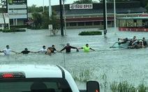 Những tấm lòng nhân ái trong siêu bão Harvey