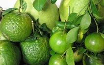 Vitamin C trong trái cây và các viên vitamin, loại nào tốt hơn?