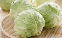 Bắp cải - rau ăn và thuốc phòng chống xơ vữa động mạch