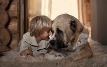 Nuôi chó giúp bạn chống lại bệnh chàm eczema và giảm hen suyễn