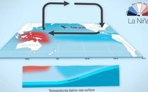 La Nina sẽ xuất hiện ở khu vực Thái Bình Dương trong năm nay