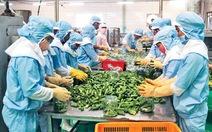 Xuất khẩu nông sản đạt kỷ lục mới