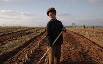 Kinh tế Triều Tiên sẽ sụp đổ trong 12 tháng tới?