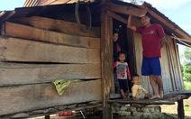 Di dân tự do vẫn nóng ở Tây Nguyên - Kỳ 1: Làng lập, rừng mất