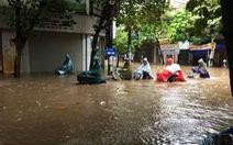 Nam Định mênh mông nước, dân bắt cá trên phố