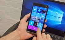 HP ngừng phát triển điện thoại Windows Phone