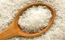Chỉ cần gạo không bị ẩm mốc, mối mọt là yên tâm?