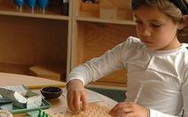 Khóa nhập môn phương pháp giáo dục Montessori (AMI)