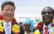 Tổng thống Zimbabwe bỏ ngai vàng, Trung Quốc hốt bạc