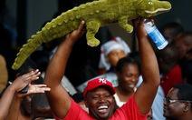 'Cá sấu' nhậm chức tổng thống Zimbabwe