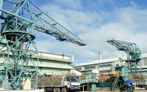 Nhà máy điện sinh khối An Khê chính thức đi vào hoạt động