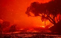 Hơn 4.000ha rừng ở Los Angeles chìm trong biển lửa