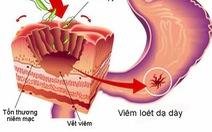 Vi khuẩn Helicobacter pylori gây loét dạ dày