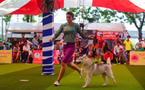 Xem cún cưng tranh tài trong Dog show 2017 tại Sài Gòn