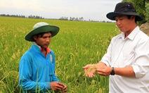 Cho chuyển nhượng đất trồng lúa có tái diễn 'địa chủ - tá điền'?