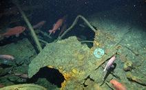 Úc tìm thấy chiếc tàu ngầm đầu tiên mất tích sau 103 năm