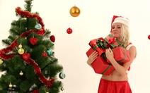Tại sao Noel lại trang trí cây thông?