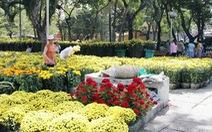 Không tổ chức chợ hoa Tết trên vỉa hè, lòng đường