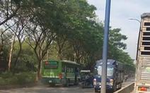 Đình chỉ tài xế xe buýt số 81 chạy ngược chiều