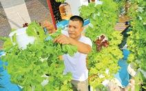 Dân Sài Gòn trồng rau ăn tết