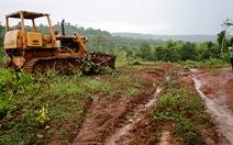 Buộc doanh nghiệp bồi thường giá trị gần 600ha rừng bị 'xóa sổ'