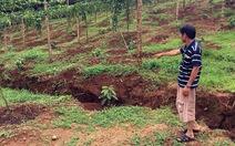 Xuất hiện vết nứt dài 100 mét gần hồ bùn đỏ Alumin Nhân Cơ