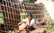 Bạn đọc Tuổi Trẻ trao 100 triệu đồng để dân dựng lại nhà