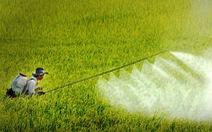 Cục Bảo vệ thực vật có 'ưu ái' cho doanh nghiệp bán chất cấm?