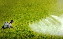 Bộ NN&PTNT kiến nghị loại bỏ thuốc bảo vệ thực vật khỏi danh mục hàng dự trữ quốc gia