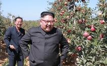 Dân Hàn bực tổng thống vì viện trợ cho Triều Tiên