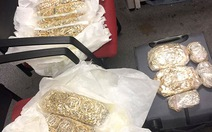 Khởi tố vụ 5 người đi máy bay quấn 30 kg vàng quanh người