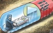 Thủ tướng yêu cầu thanh tra việc cấp phép nhập thuốc của VN Pharma
