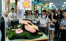 Diễn đàn Sinh viên châu Á với môi trường - ASEP 2018: Hiểu về rừng để cùng bảo vệ