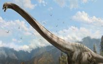 'Điểm danh' những sinh vật cao nhất mọi thời đại