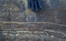 Hóa thạch cổ xưa nhất thế giới chỉ là đá thông thường?