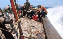 Việt Nam mong EU sớm gỡ thẻ vàng với thủy hải sản