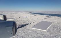 Tảng băng A68 gây bão mạng có chị em sinh đôi