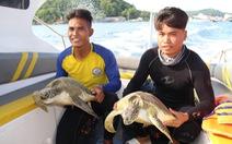 Thả 9 con rùa biển quý hiếm về biển Phú Quốc