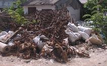Nói không với xả rác: Ngán ngẩm rác nhà ta từ nhà... hàng xóm