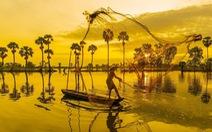 Đến 'xứ sở cây thốt nốt' Tịnh Biên mùa nước nổi